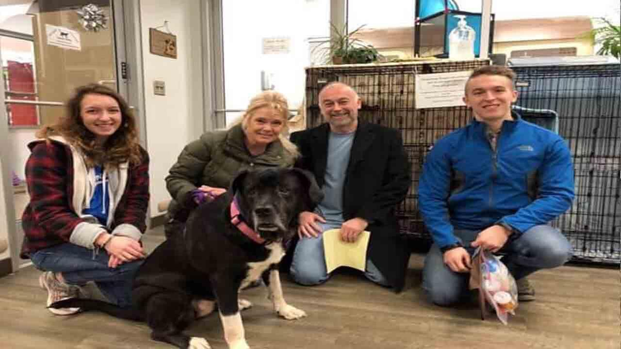 Polina, KC Pet Projects longest term resident, officially has a family for Christmas