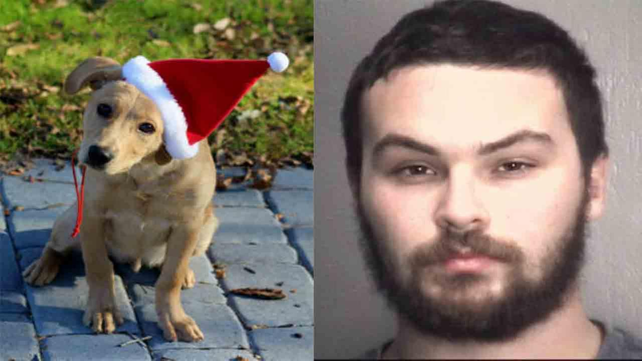 Christopher Simpson was arrested after his girlfriends family said he beat their dog to death