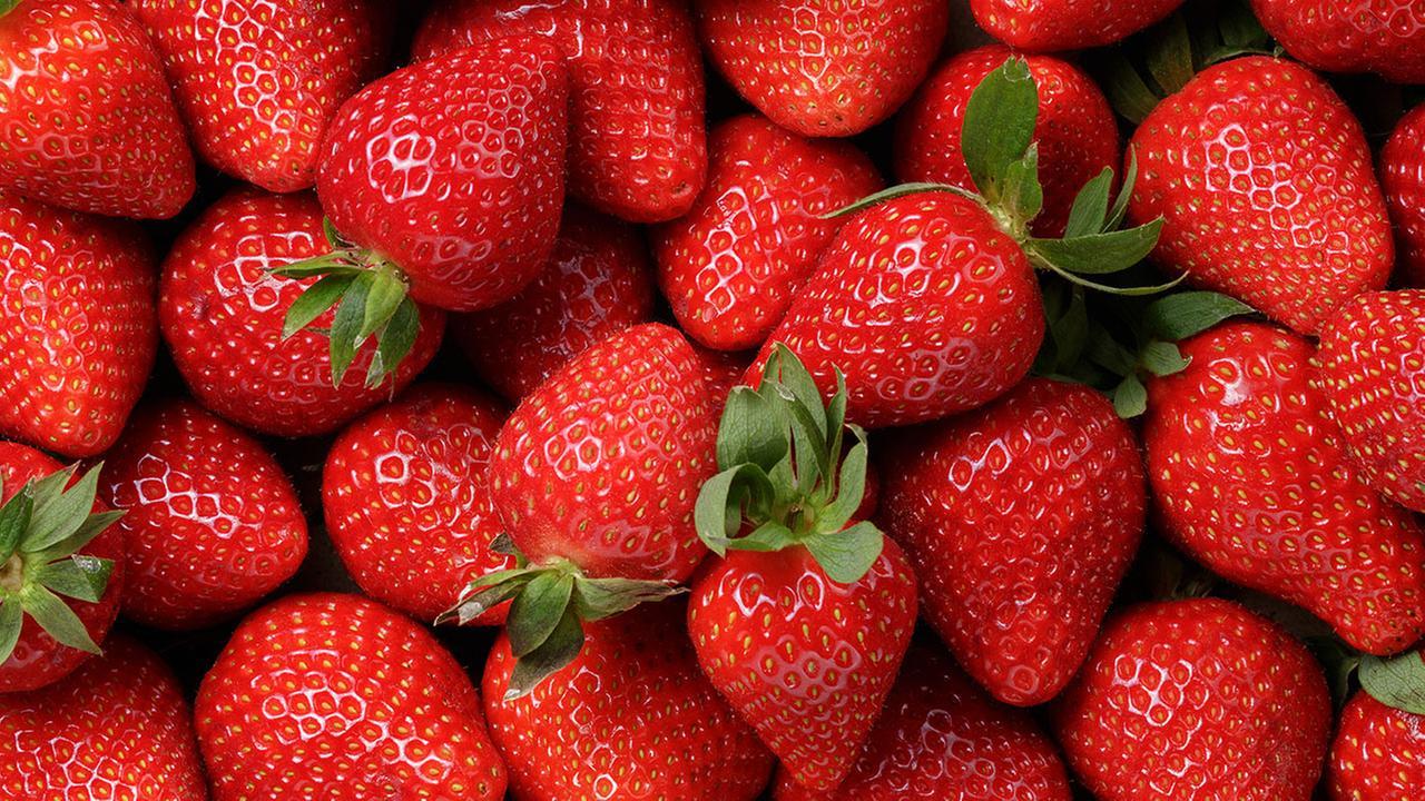Despite recent cold, N.C. strawberry season about to ripen