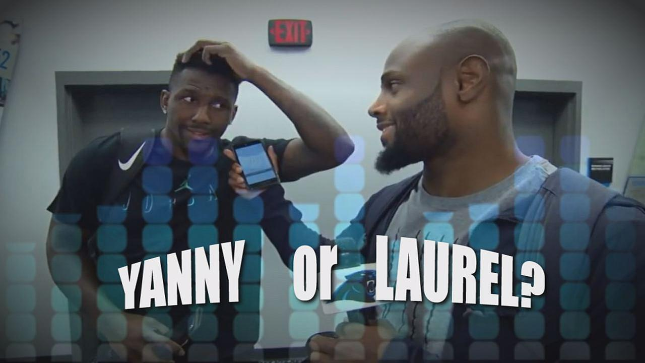 Yanny or Laurel? Carolina Panthers tackle the question