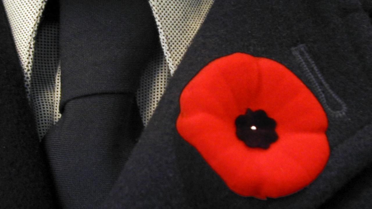 War memorial poppy