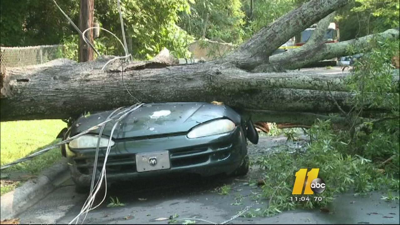 Quick moving storms leave uprooted trees, damage