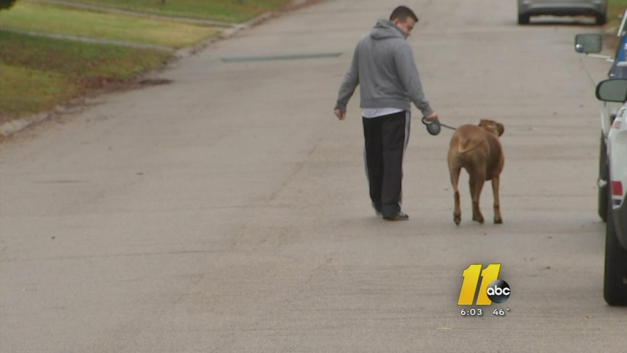 City council looks at dangerous dog laws