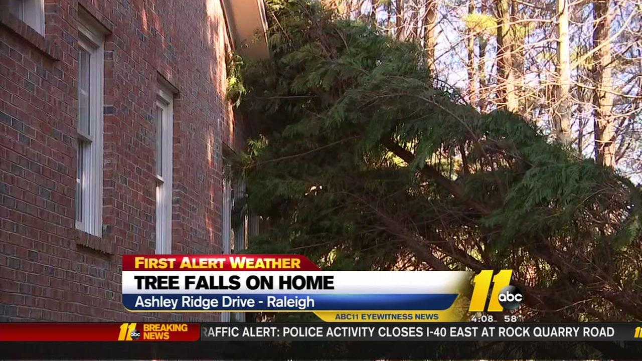 Tree falls of Raleigh home