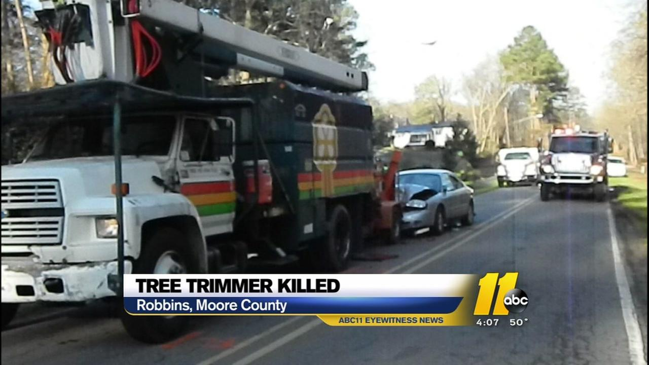 Tree trimmer killed