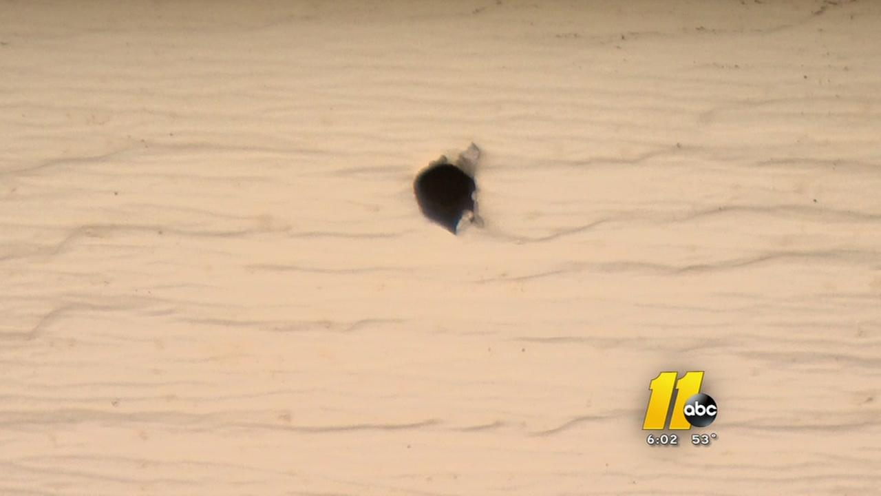 Bullet hole not related to Denkins death