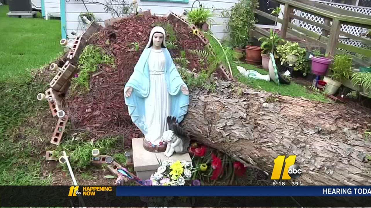 Falling Tree Misses Virgin Mary Statue