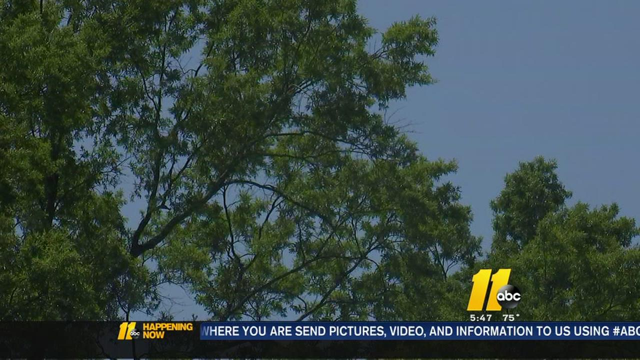 NC air quality report released