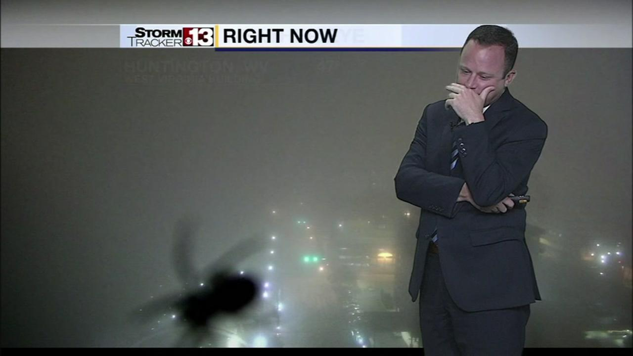 Weatherman scared by spider