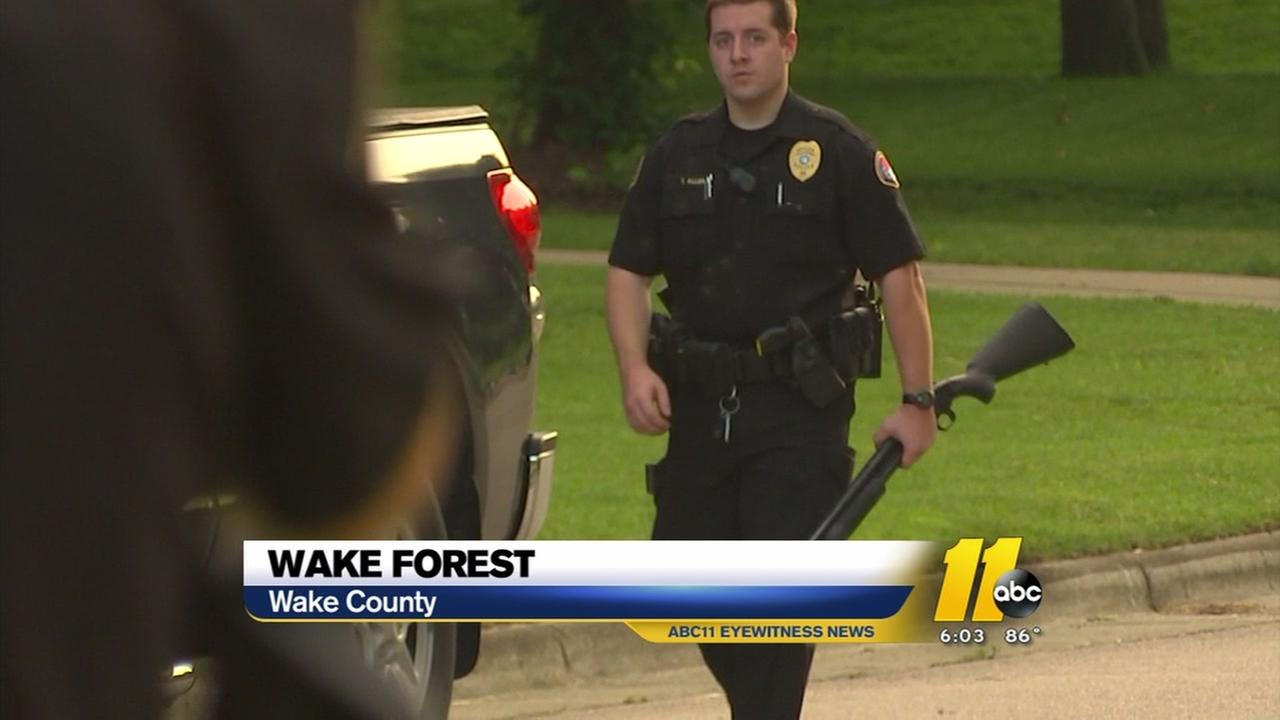 Wake Forest swatting