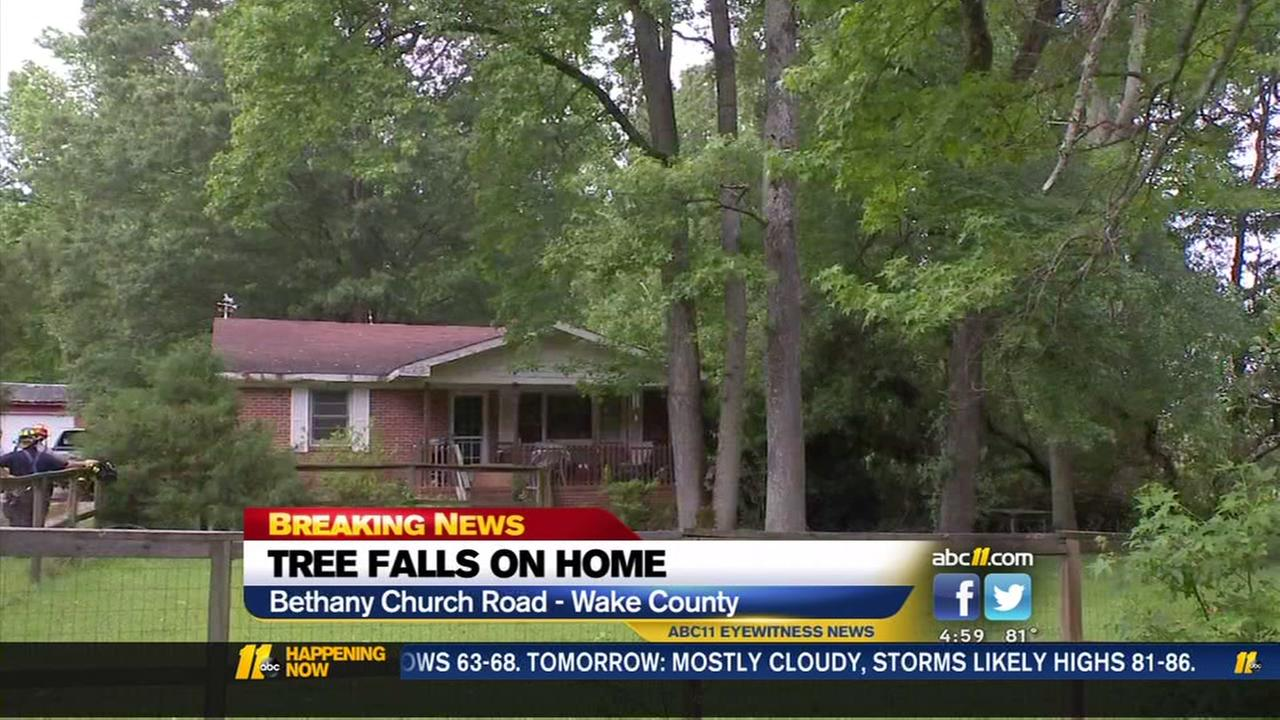 Tree falls on Wake County home