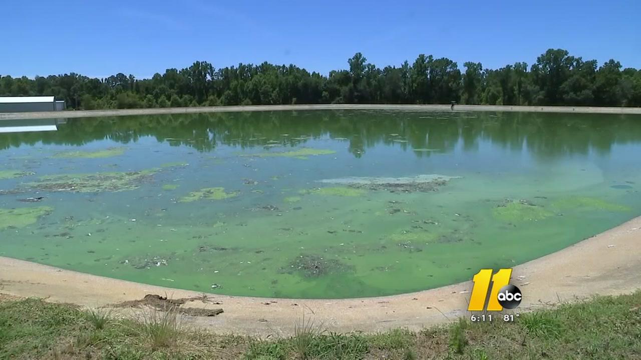 Angier residents deal with stench