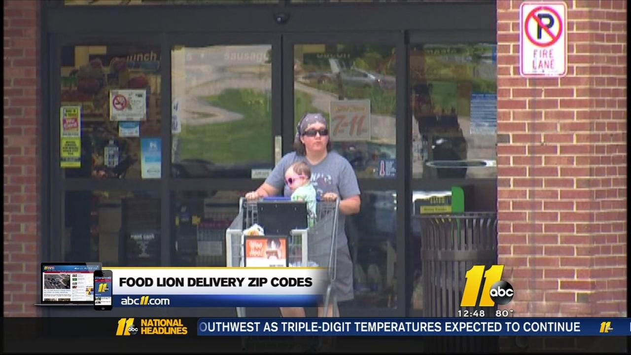 Food Lion delivery