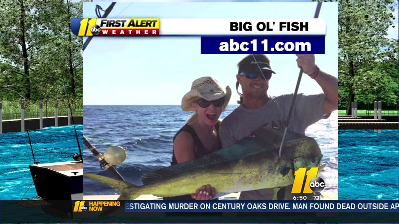 Big Ol Fish