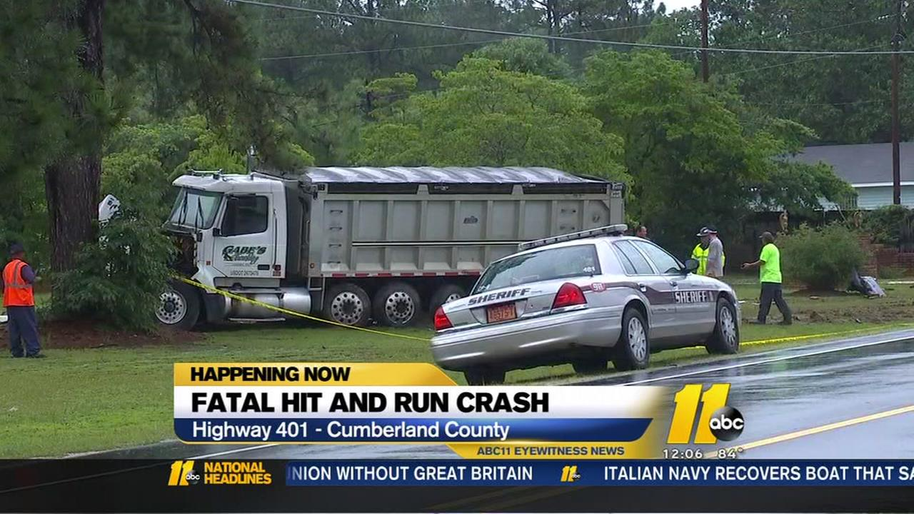 Fatal hit-and-run crash