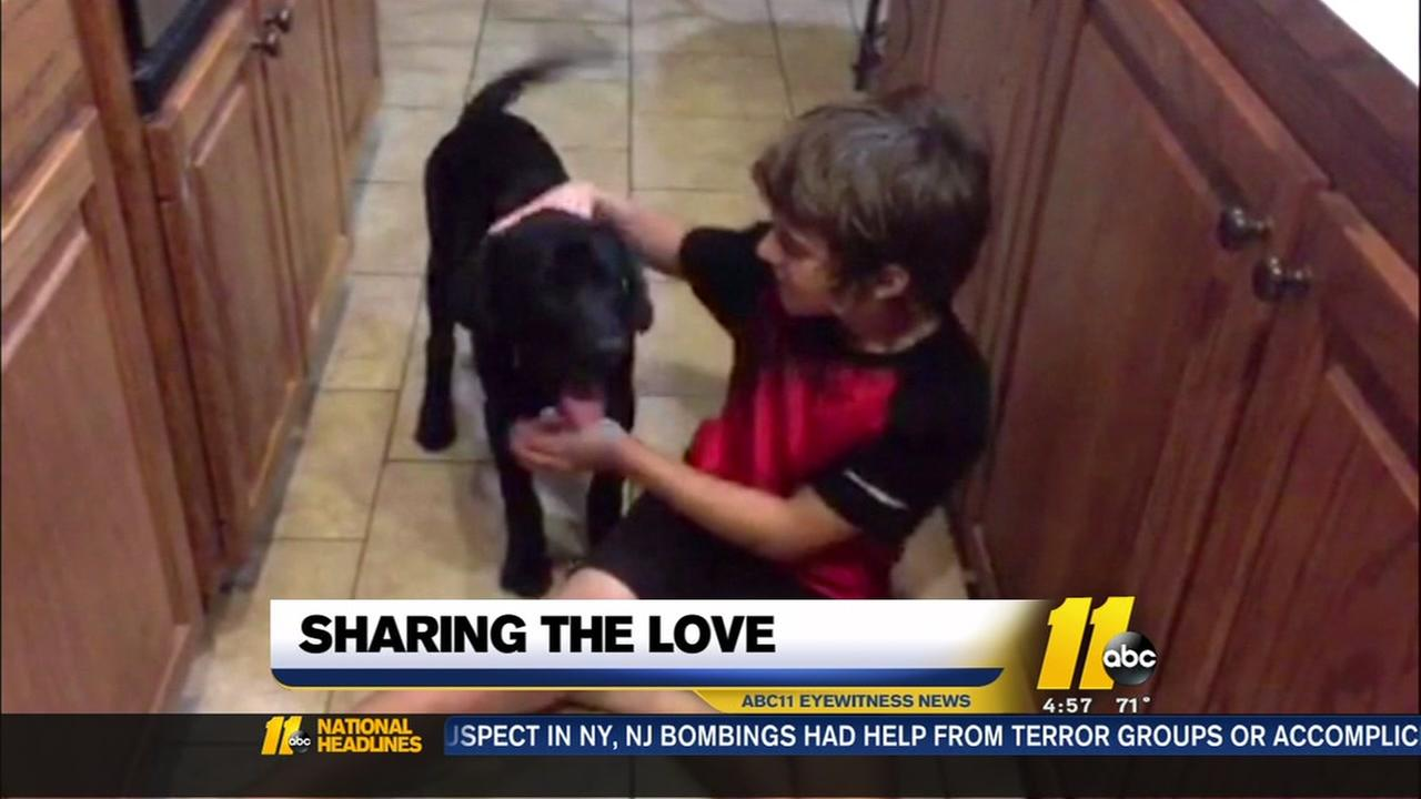 Happy ending for boy who stole dog hugs