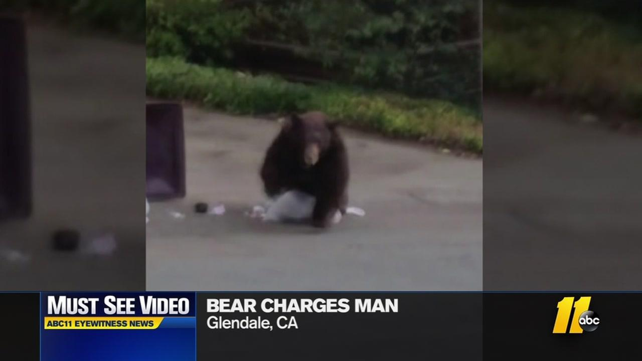 Must-see video: Bear charges man