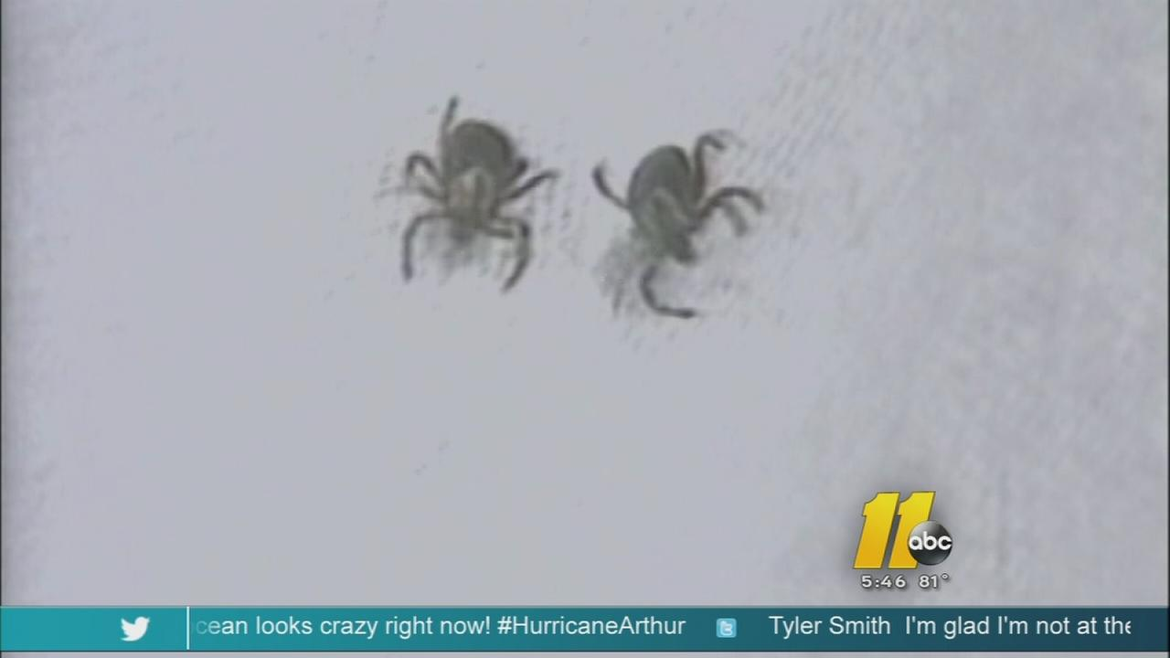 Controversy over Lyme Disease in NC