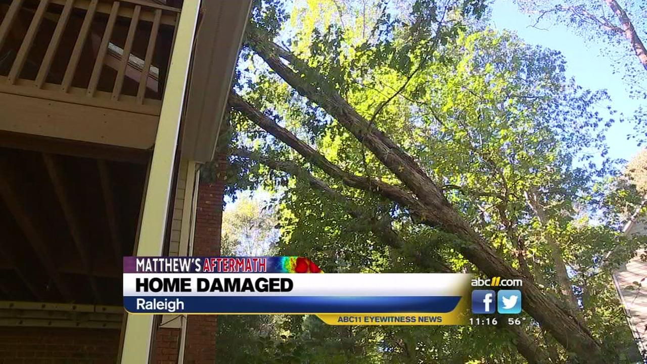 Tree slams into Raleigh home