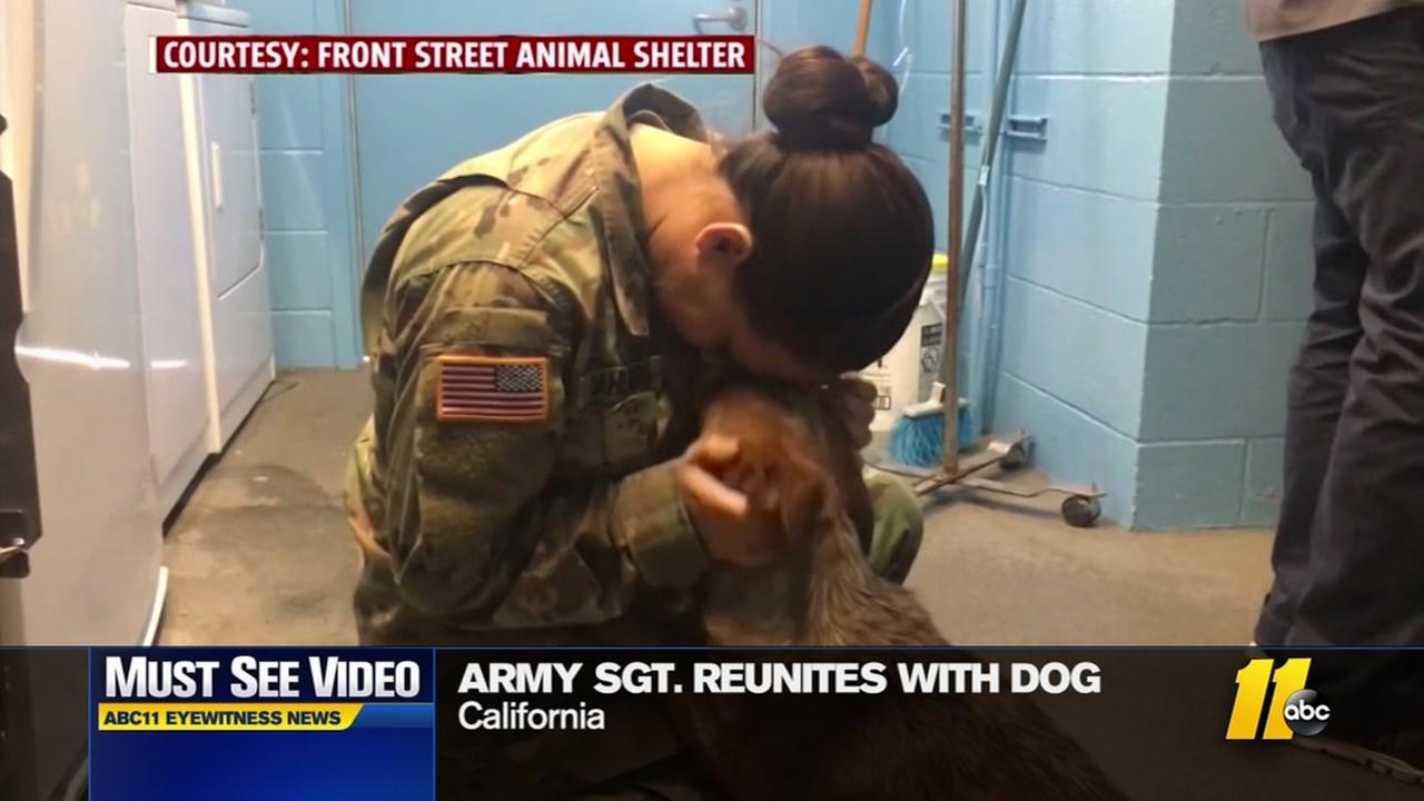 Army sergeant reunites with lost dog