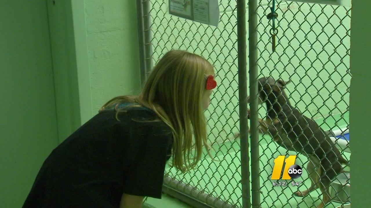 Raleigh girl donates to animal shelter