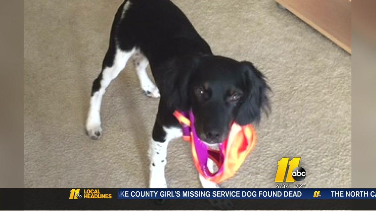 Missing service dog found dead