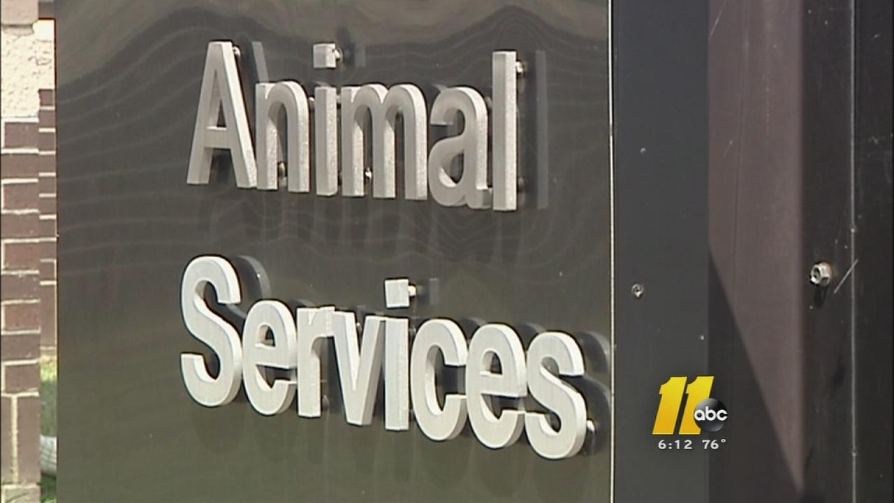 Family, Animal Control dispute dog killing