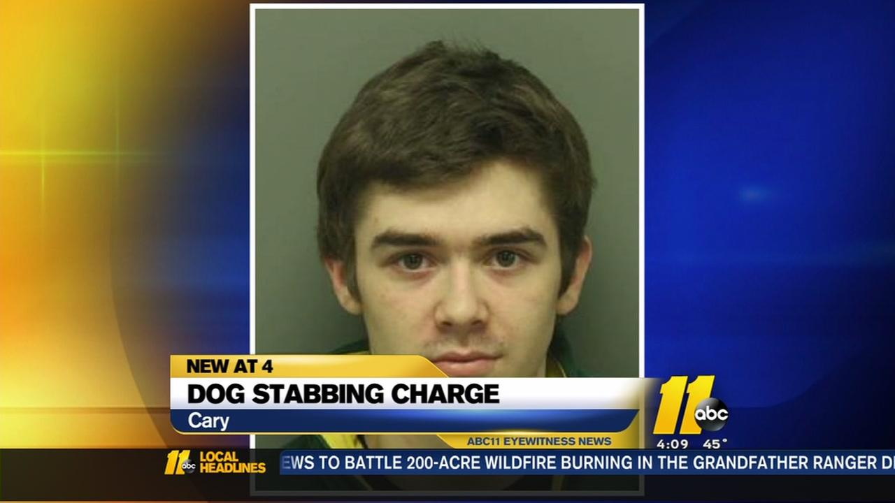 Cary teen charged in dog stabbing