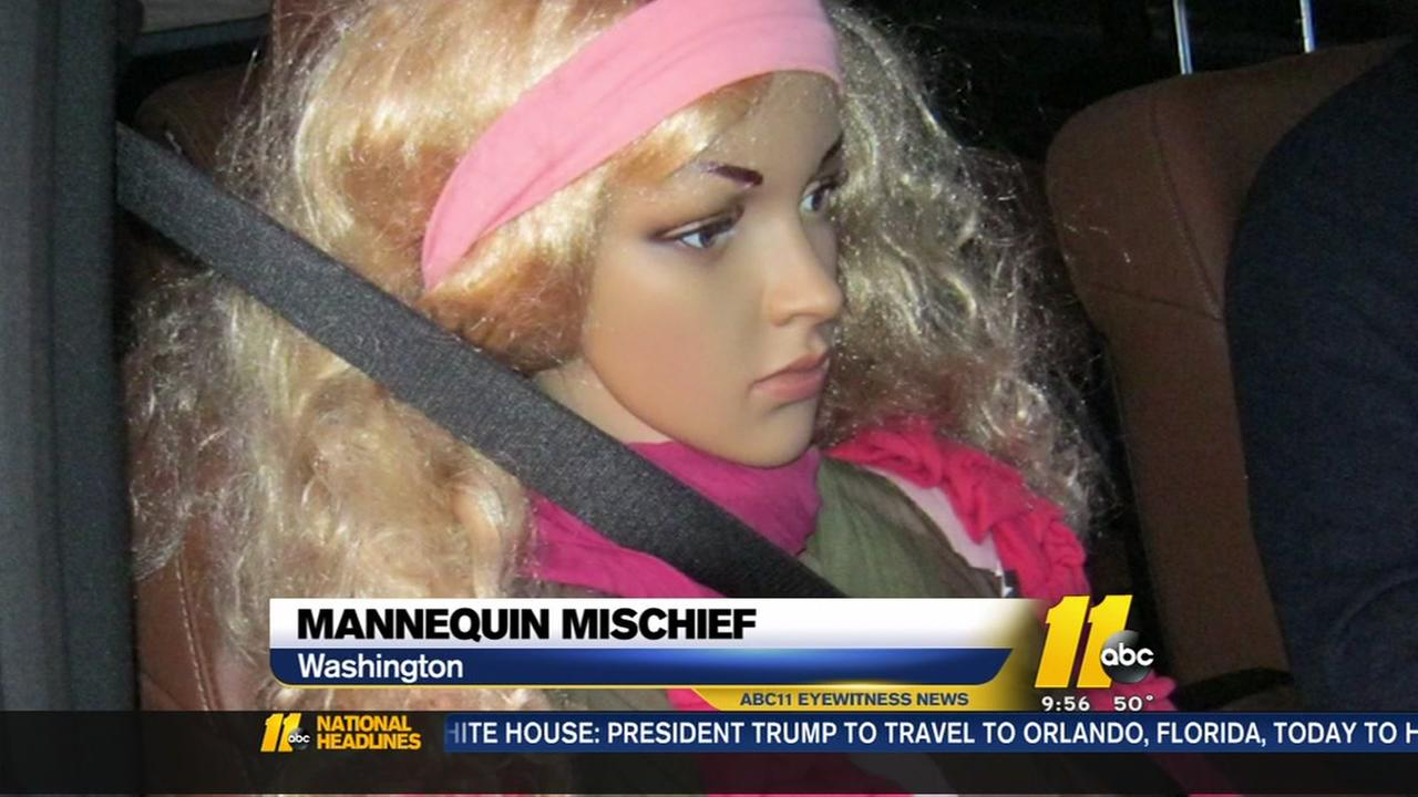 Man poses mannequin as car passenger