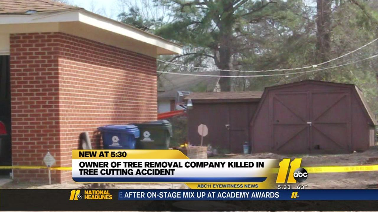 Owner of tree removal service dies in fall