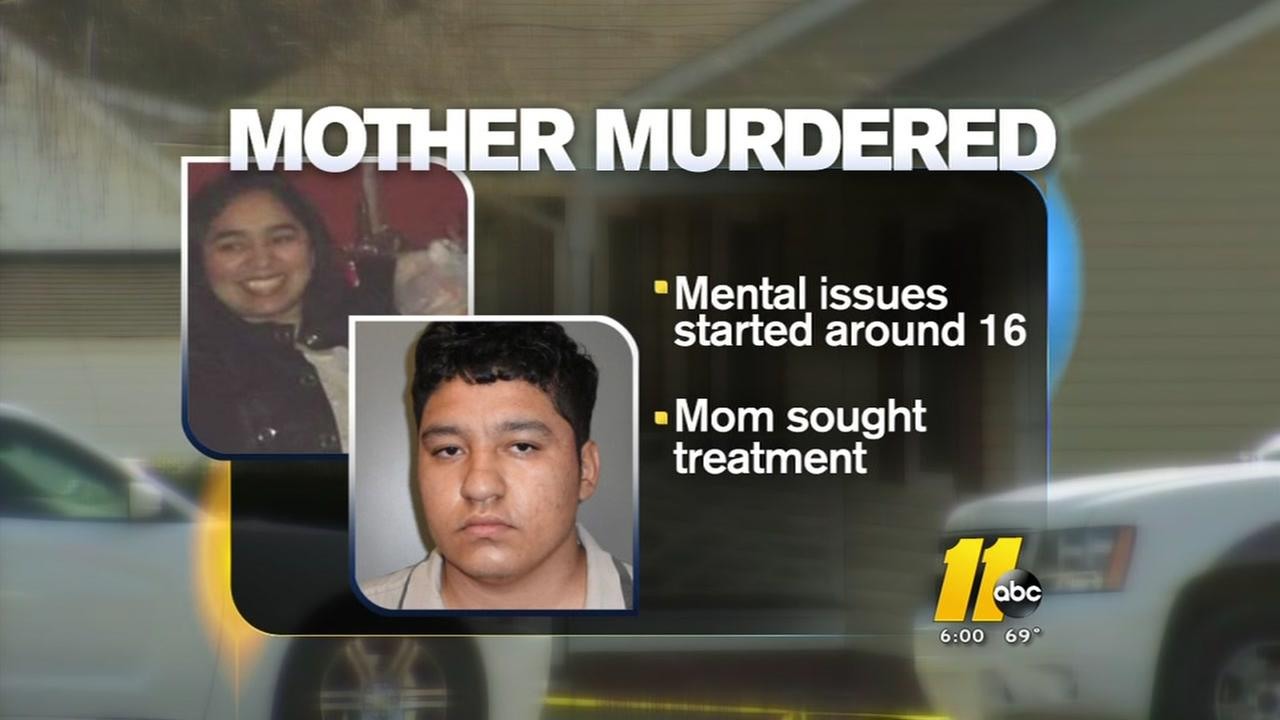 Teen killed mother because he felt like it, according to warrants