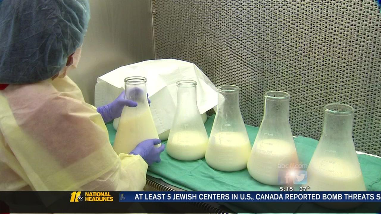 Shared milk for babies undergoes strict testing