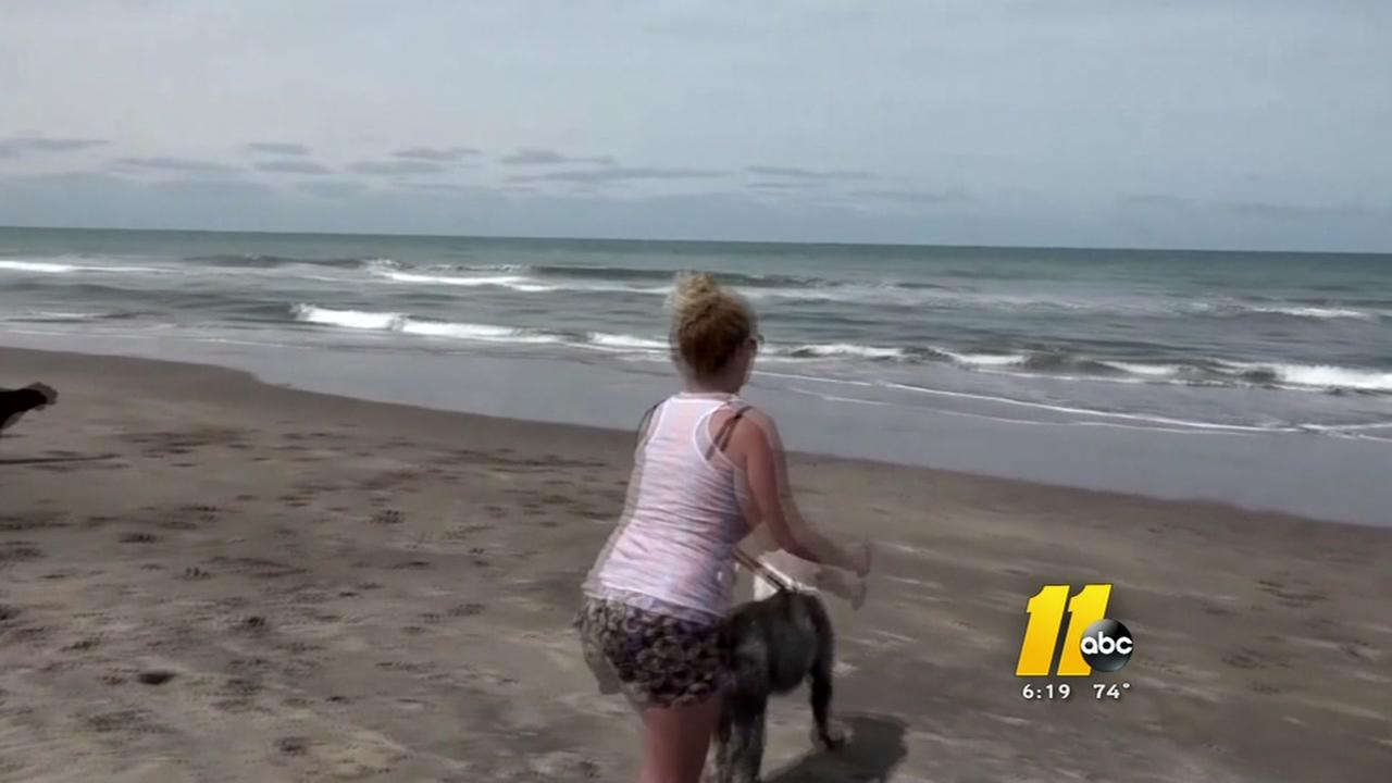 Carolina Beach loosens dog ban