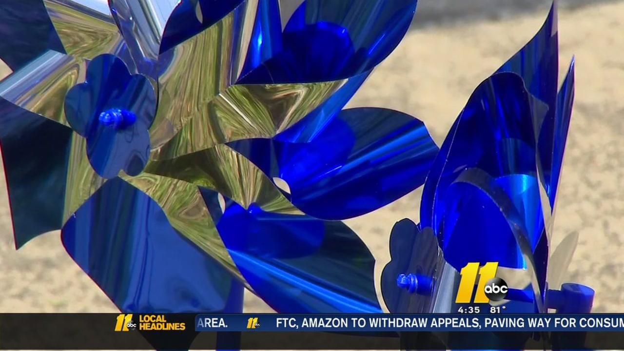 Pinwheels planted in Fayetteville