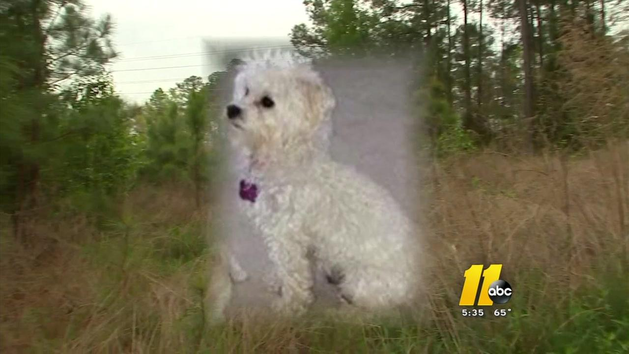 Durham man says coyote snatched his dog