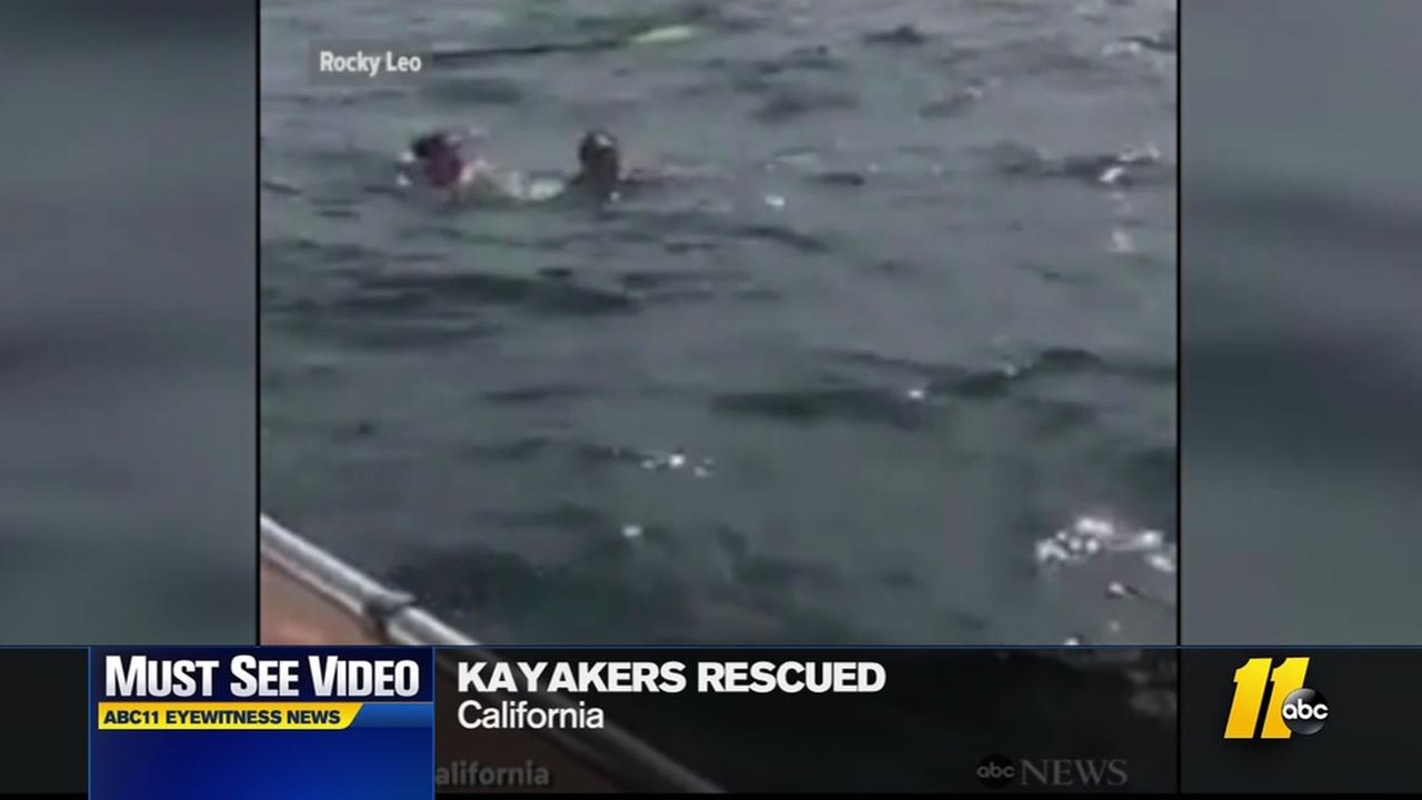 Kayakers rescued