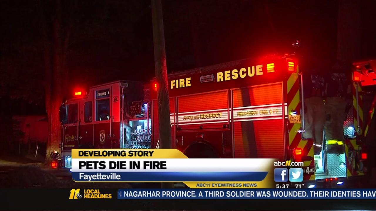 Pets die in fire