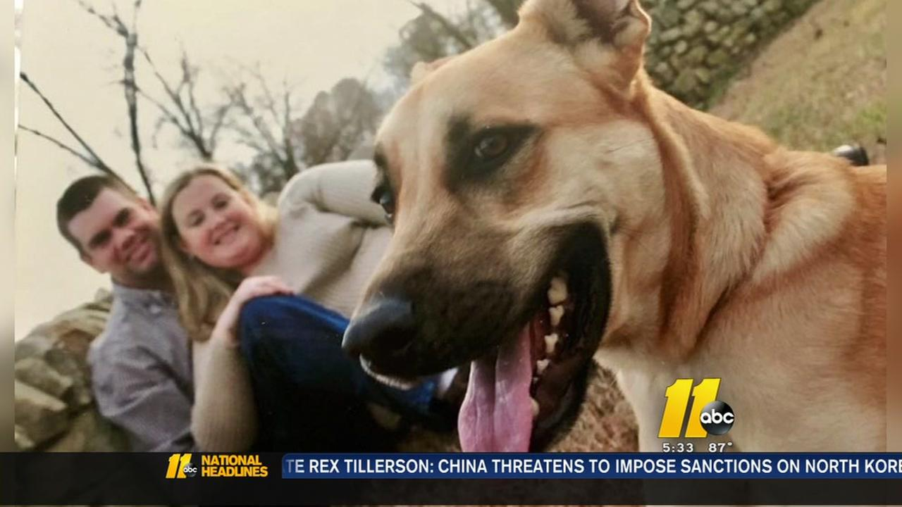 Firefighter finds intruder broke in, killed family pet