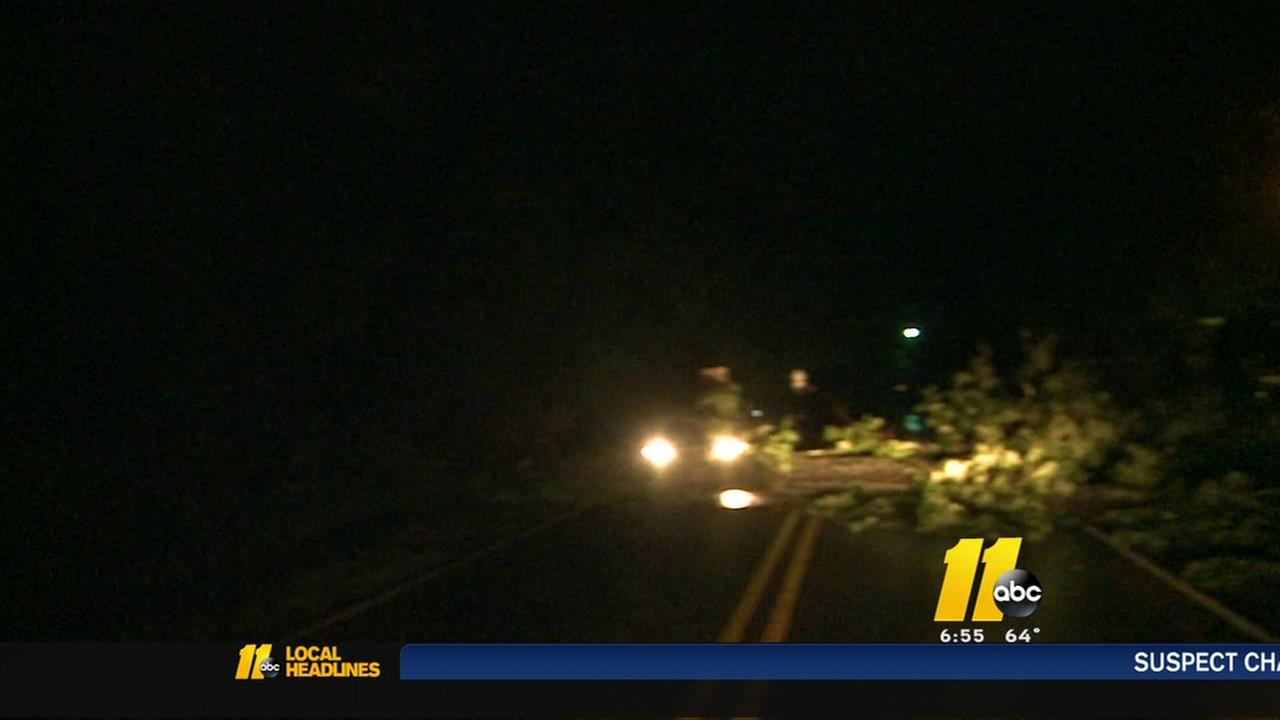 Driver slams into downed tree in Durham