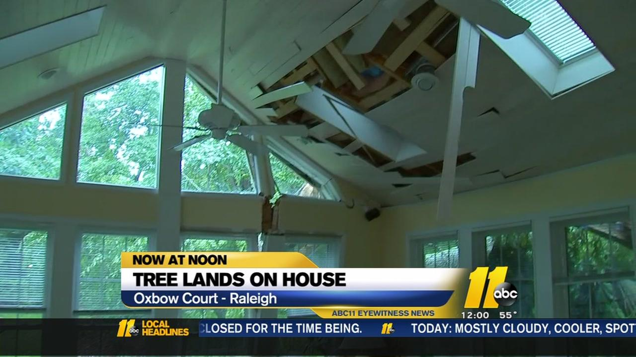Tree lands on Raleigh home