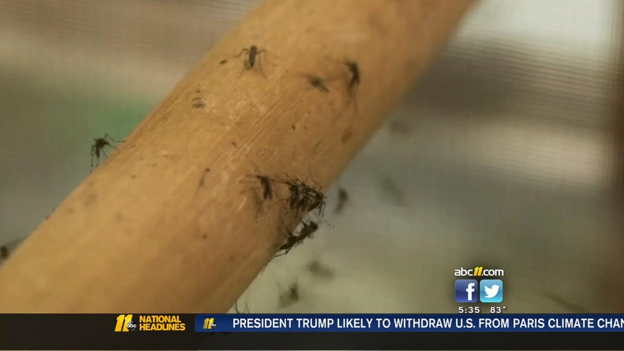 Zika cases on the rise in Wake County