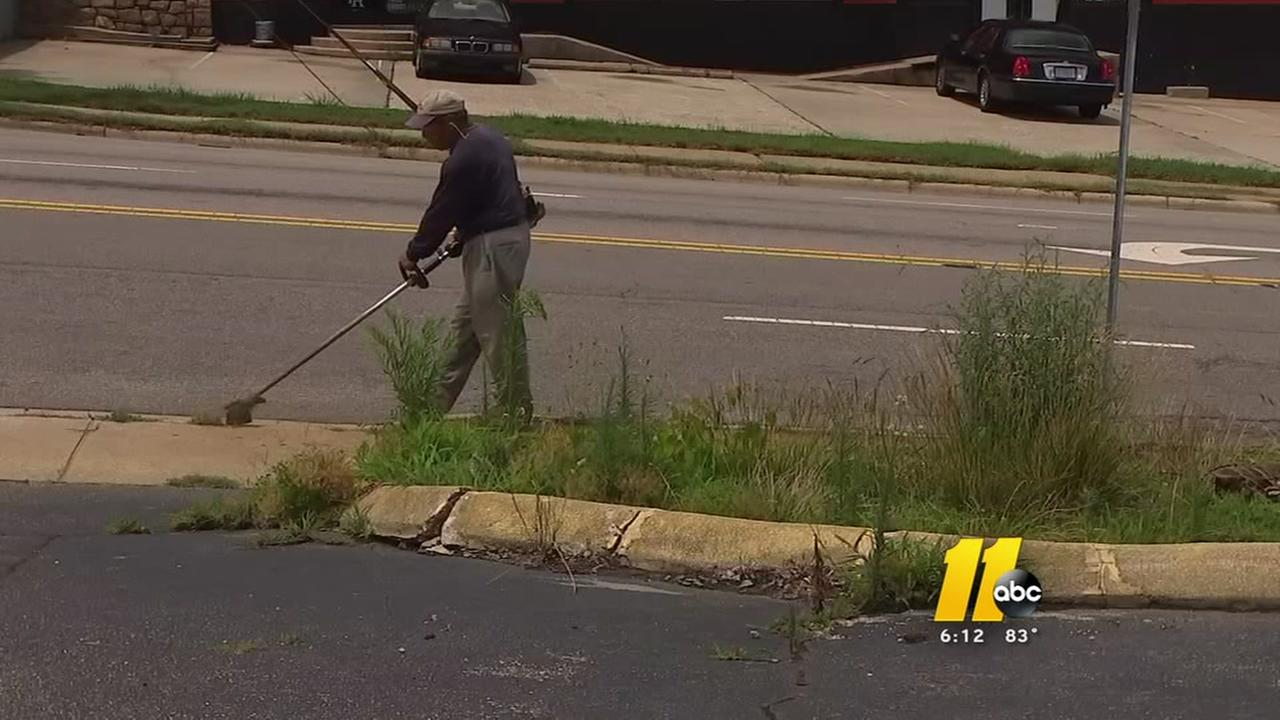 Unsightly weeds in Raleigh