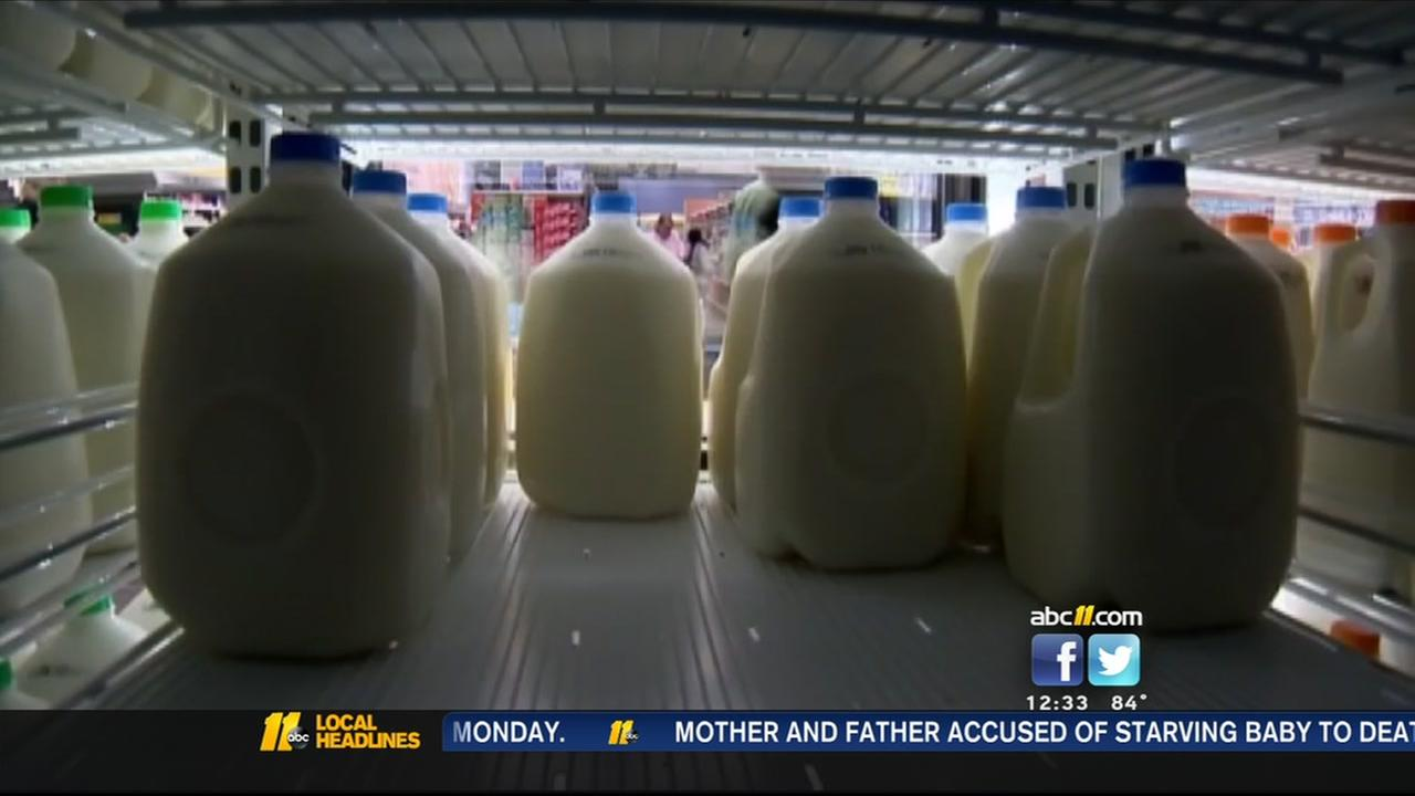 Auditor responds to milk report criticism