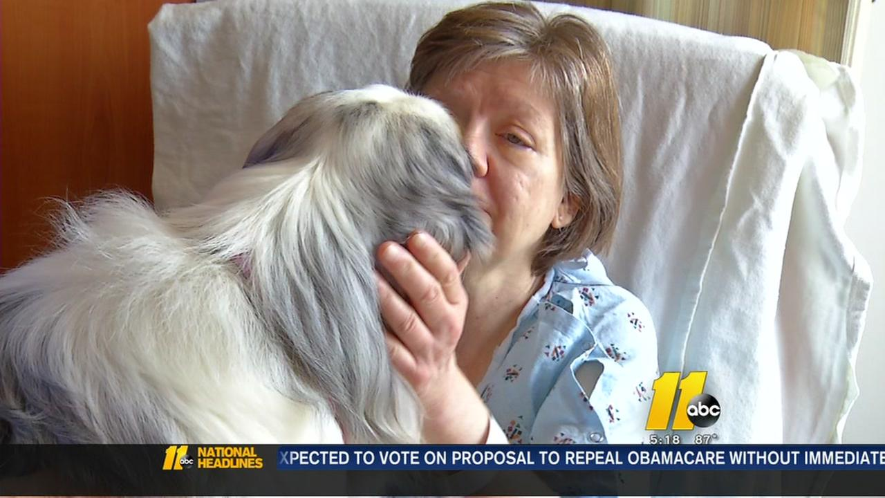 Therapy dogs bring comfort to hospital patients