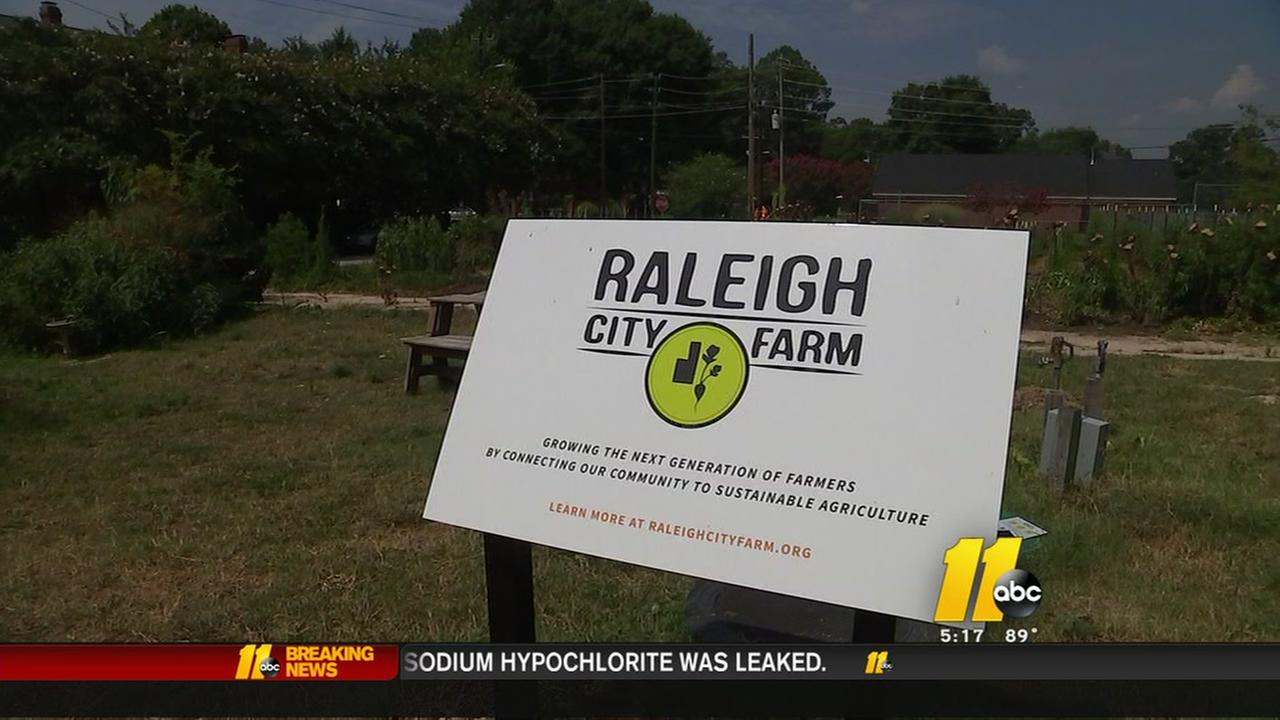 Raleigh City Farm needs your help to grow