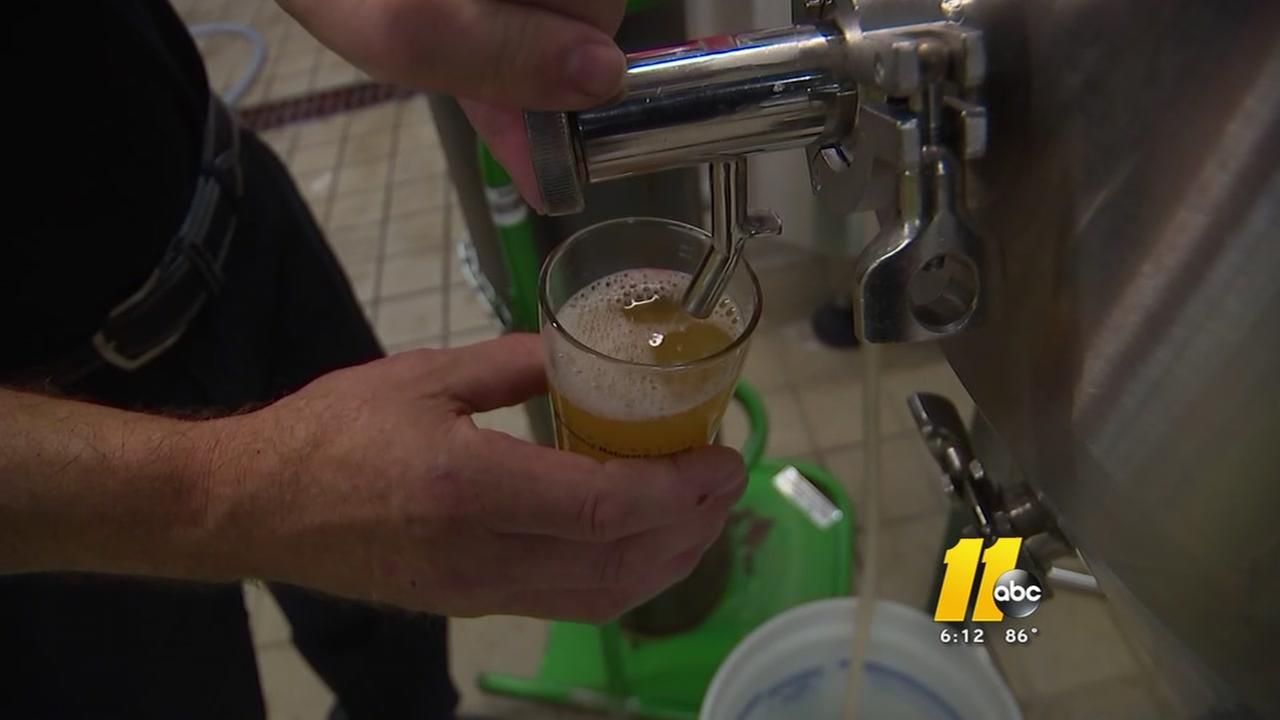 NCSU lab brews unique beer with wild wasp, bee yeast