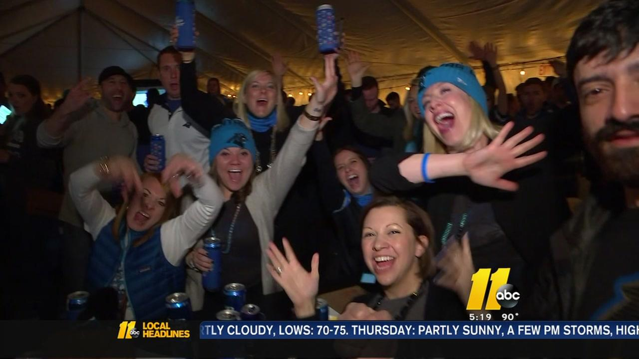 Panthers fans will go to great lengths for a Super Bowl win