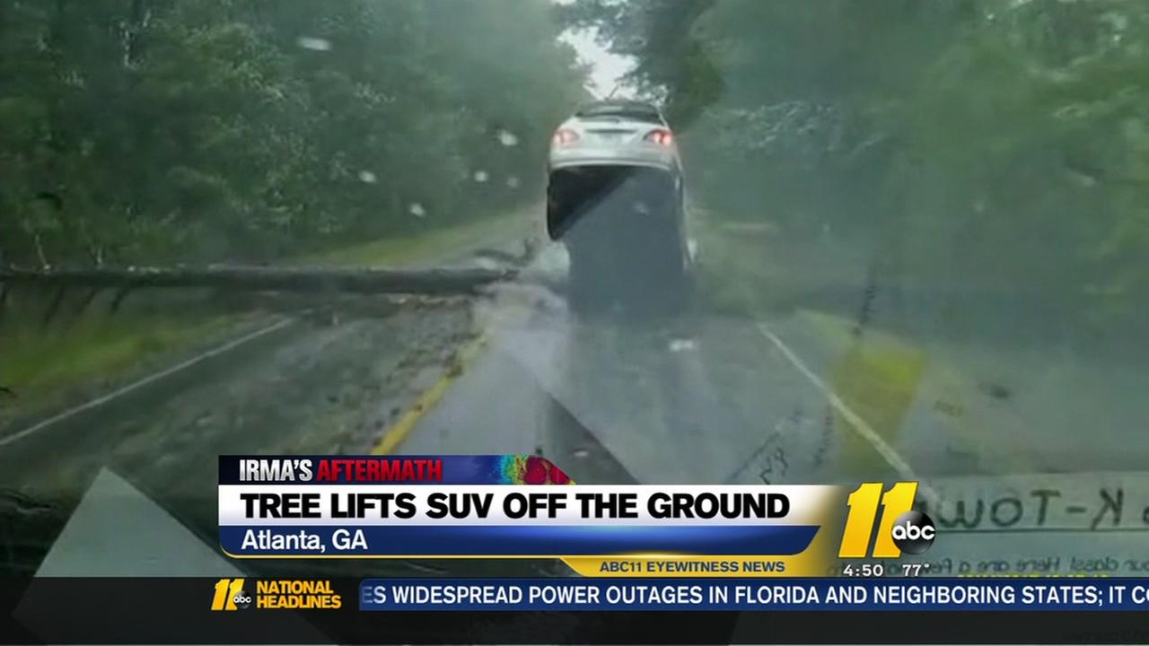 Tree lifts SUV off ground