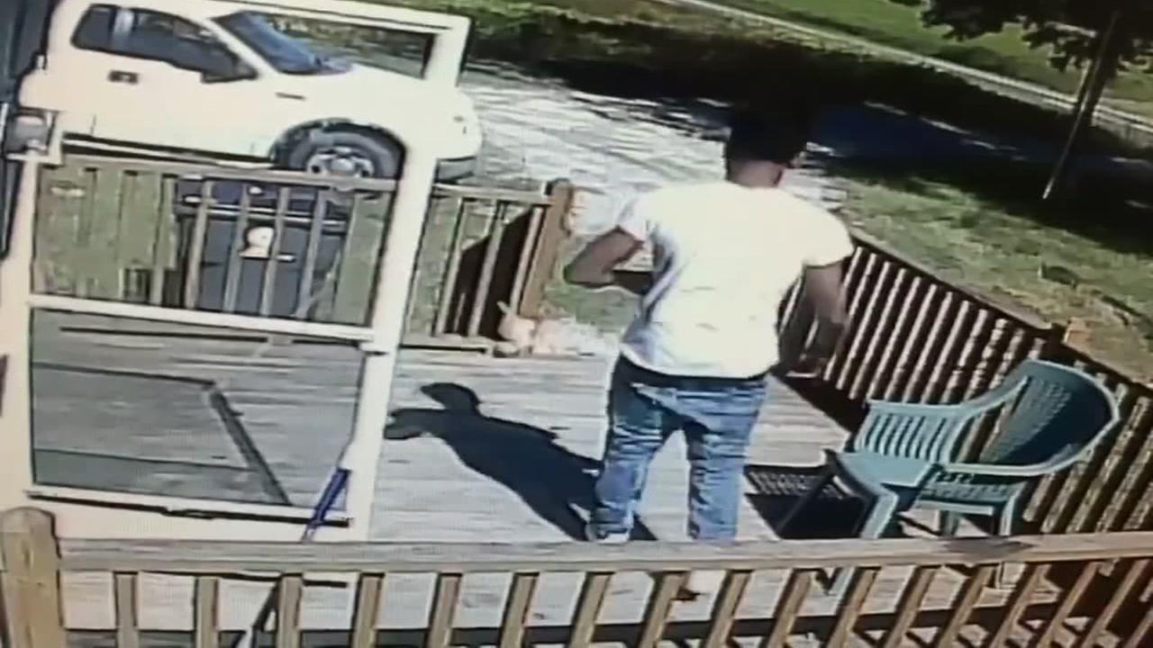 Man seen kicking kitten during North Carolina home break-in