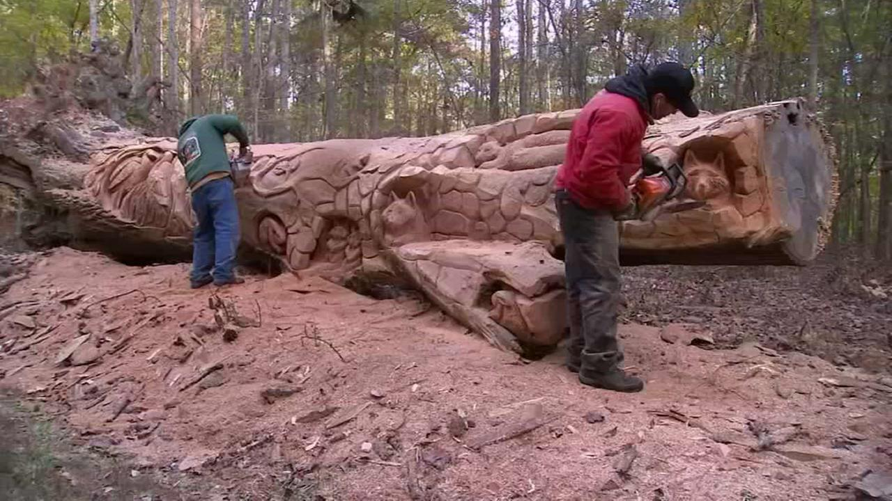 Chainsaw artists transform fallen tree at Umstead State Park